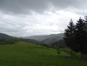 paysage-vu-du-rucher-sous-la-pluie