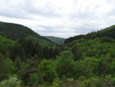 paysage-de-haute-ardeche-proche-du-rucher