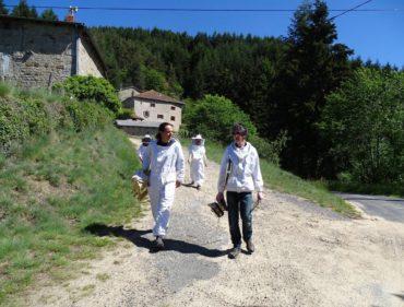 formation-apiculture-en-route-vers-le-rucher