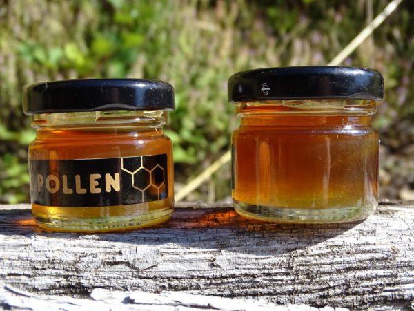 miel-presse-chataignier-petits-pots-noir-pollen