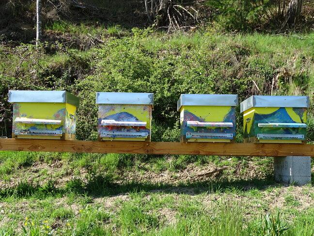 ruche-ecologique