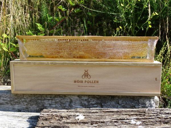 grand-cadre-de-miel-en-rayon-noir-pollen